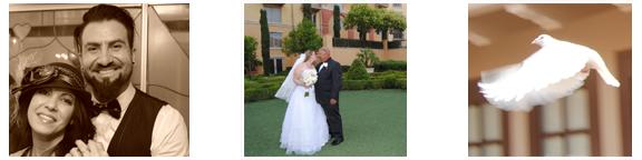 Weddings_sample